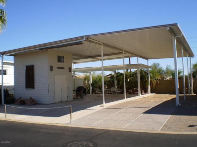 17200 W Bell Road, Surprise, AZ 85374 (MLS #5525120) :: Brett Tanner Home Selling Team