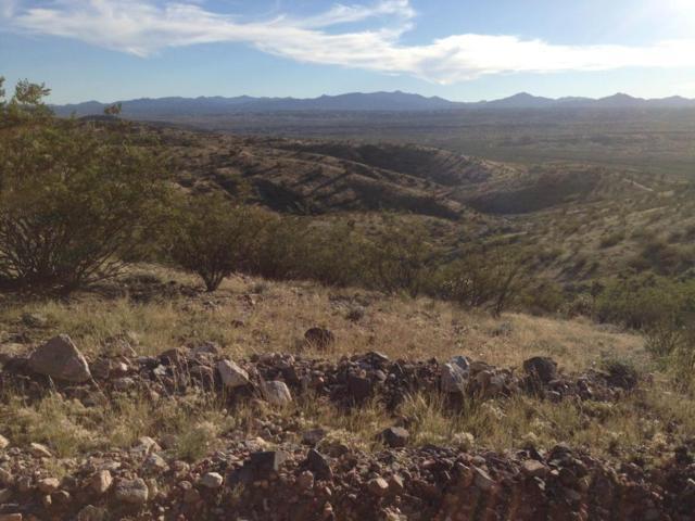 Lot 63 E Mountain Goat Road, Kingman, AZ 86401 (MLS #5526377) :: Brett Tanner Home Selling Team