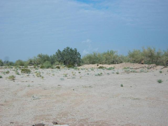 0 N Richards Street, Gila Bend, AZ 85337 (MLS #5533216) :: Brett Tanner Home Selling Team