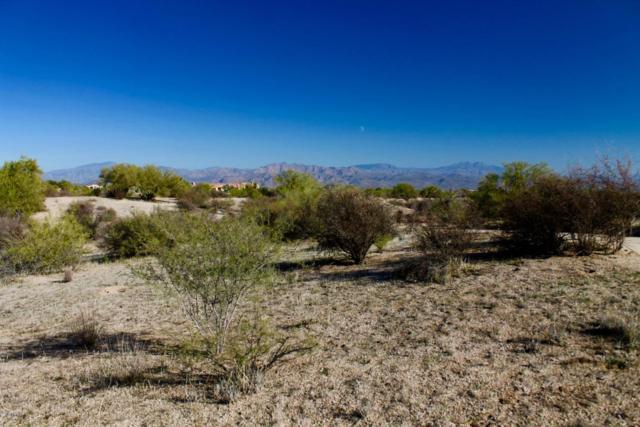 0 N Aloe Vera Street, Scottsdale, AZ 85262 (MLS #5534276) :: Brett Tanner Home Selling Team
