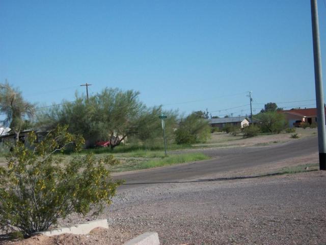 0 W Gatlin Street, Gila Bend, AZ 85337 (MLS #5535468) :: Brett Tanner Home Selling Team