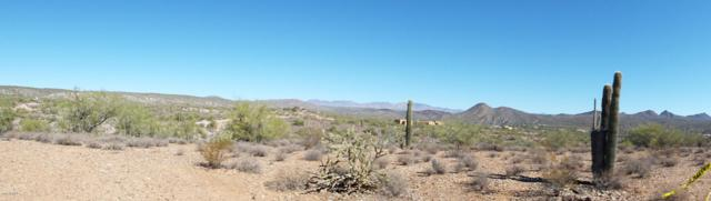 365XX S Grantham Hills Trail, Wickenburg, AZ 85390 (MLS #5536304) :: Brett Tanner Home Selling Team