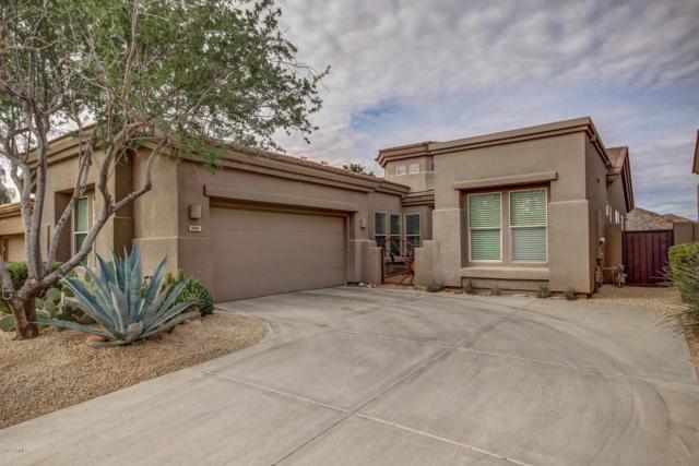 7334 E Evening Glow Drive, Scottsdale, AZ 85266 (MLS #5537117) :: Desert Home Premier