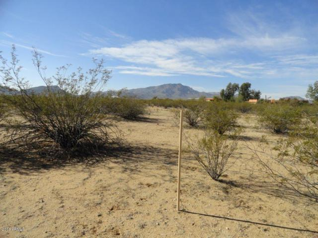 Lot 91 W William Road, Aguila, AZ 85320 (MLS #5537991) :: Yost Realty Group at RE/MAX Casa Grande