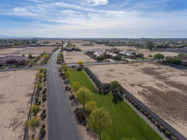 18233 W Palo Verde Court, Litchfield Park, AZ 85340 (MLS #5538937) :: Brett Tanner Home Selling Team