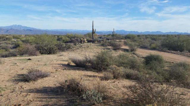 0 E Aloe Vera Drive, Scottsdale, AZ 85252 (MLS #5539684) :: Brett Tanner Home Selling Team