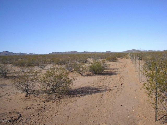 0000 Rider Road, Aguila, AZ 85320 (MLS #5540890) :: neXGen Real Estate