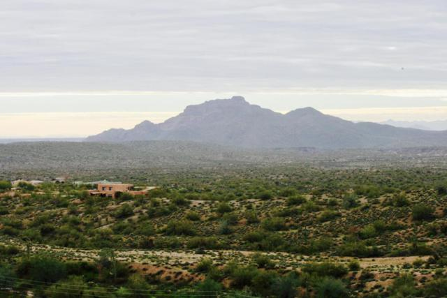 00000 N Vista Del Oro, Fort McDowell, AZ 85264 (MLS #5553071) :: Santizo Realty Group