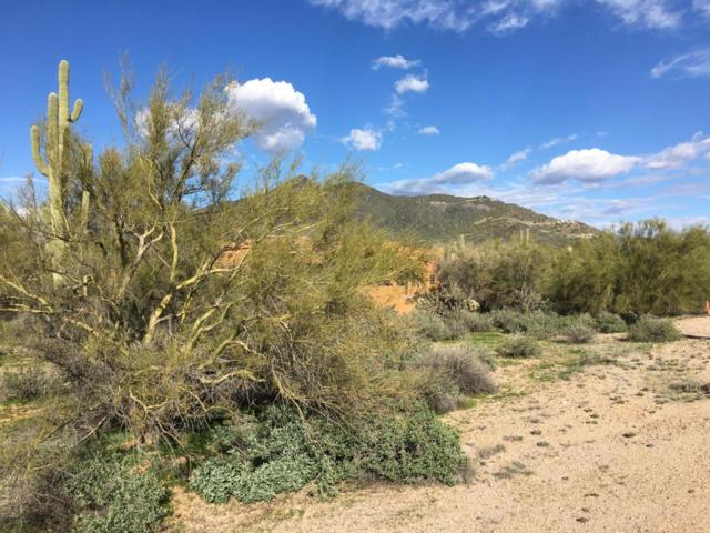 33000 N Cave Creek Road, Cave Creek, AZ 85331 (MLS #5564074) :: Kelly Cook Real Estate Group