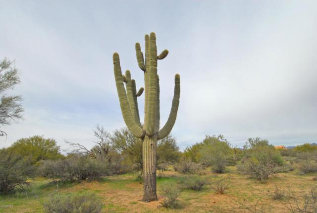 30777 N 161 Street, Scottsdale, AZ 85262 (MLS #5566690) :: The Garcia Group @ My Home Group