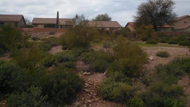 6166 S Eagle Pass Road, Gold Canyon, AZ 85118 (MLS #5566870) :: Yost Realty Group at RE/MAX Casa Grande