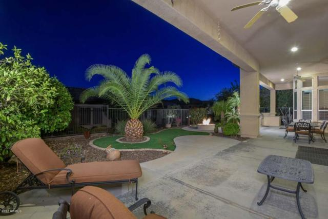 12691 W Dale Lane, Peoria, AZ 85383 (MLS #5566990) :: The Worth Group