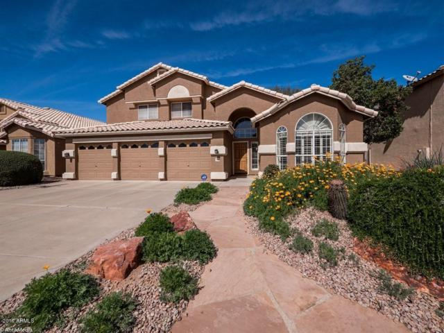 5360 W Del Rio Street, Chandler, AZ 85226 (MLS #5572614) :: The Everest Team at My Home Group