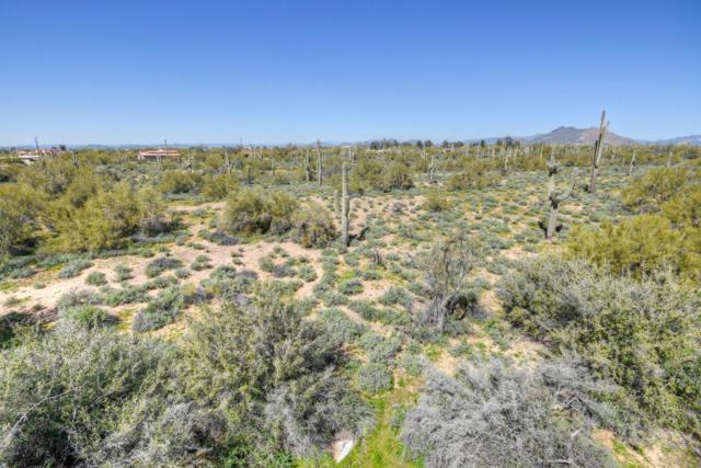 7176 E Dixileta Drive, Scottsdale, AZ 85266 (MLS #5573267) :: Yost Realty Group at RE/MAX Casa Grande
