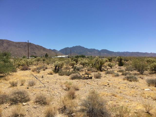 00 Pierce Ferry Road, Dolan Springs, AZ 86441 (MLS #5584053) :: Yost Realty Group at RE/MAX Casa Grande