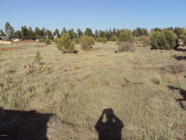 2745 Trevor Way, Overgaard, AZ 85933 (MLS #5590050) :: Brett Tanner Home Selling Team
