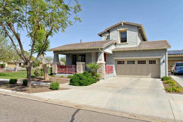 15364 W Wethersfield Road, Surprise, AZ 85379 (MLS #5591054) :: Kortright Group - West USA Realty