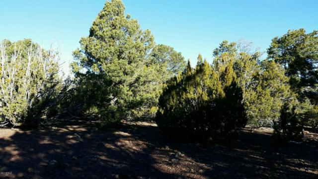 Lot 33 Ricks Road, Vernon, AZ 85940 (MLS #5591386) :: Lifestyle Partners Team