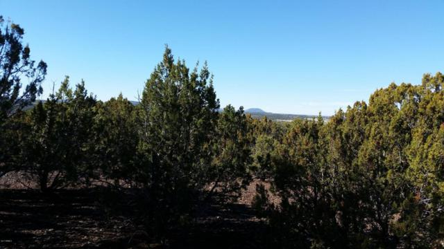 Lot 47 Uphill Trail, Vernon, AZ 85940 (MLS #5591392) :: Openshaw Real Estate Group in partnership with The Jesse Herfel Real Estate Group