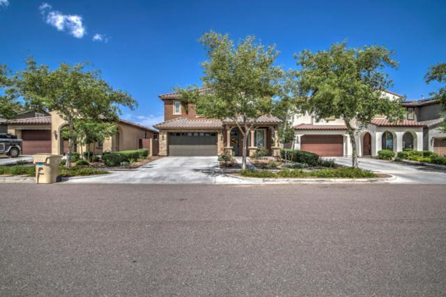 2269 N Park Meadows Drive, Buckeye, AZ 85396 (MLS #5596876) :: Cambridge Properties