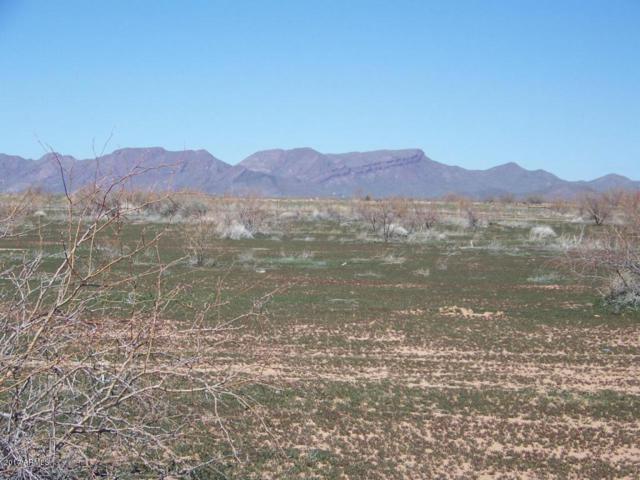 02 W Long Rifle Road, Aguila, AZ 85320 (MLS #5598534) :: The Daniel Montez Real Estate Group