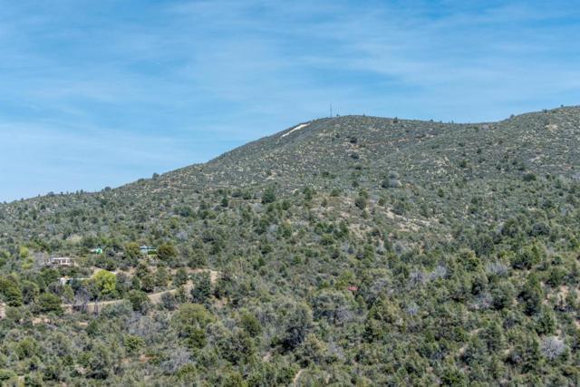 650 S Canyon Drive, Prescott, AZ 86303 (MLS #5598965) :: Klaus Team Real Estate Solutions