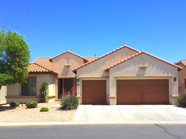 5423 N Scottsdale Road, Eloy, AZ 85131 (MLS #5602500) :: Yost Realty Group at RE/MAX Casa Grande