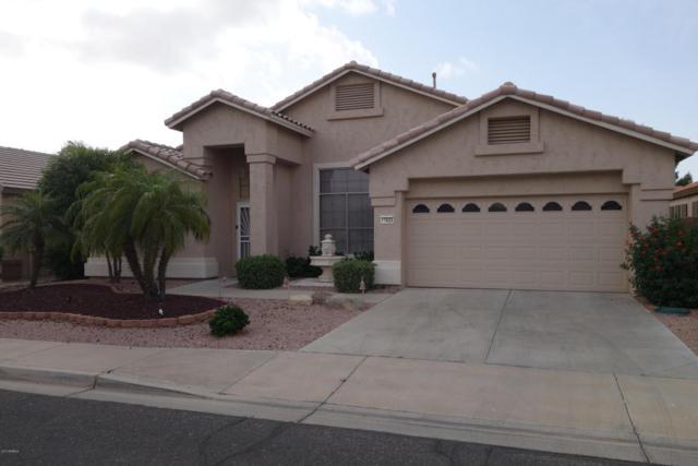 17625 N Goldwater Drive N, Surprise, AZ 85374 (MLS #5602861) :: Desert Home Premier