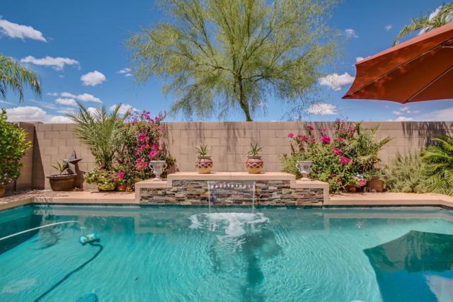 5250 E Silverbell Road, San Tan Valley, AZ 85143 (MLS #5603254) :: RE/MAX Home Expert Realty