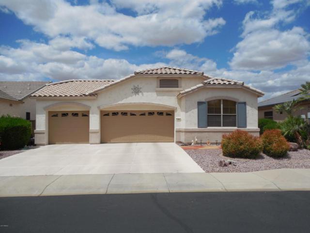 17848 W Addie Lane, Surprise, AZ 85374 (MLS #5603696) :: Desert Home Premier