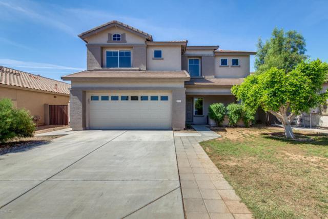 8183 W Deanna Drive, Peoria, AZ 85382 (MLS #5605690) :: The Laughton Team
