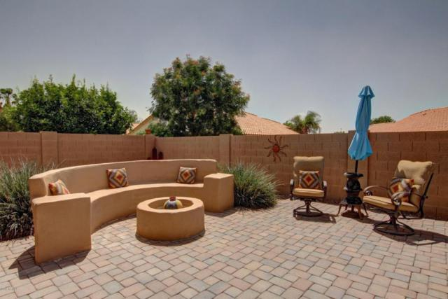 2332 S Revolta, Mesa, AZ 85209 (MLS #5606100) :: The Bill and Cindy Flowers Team