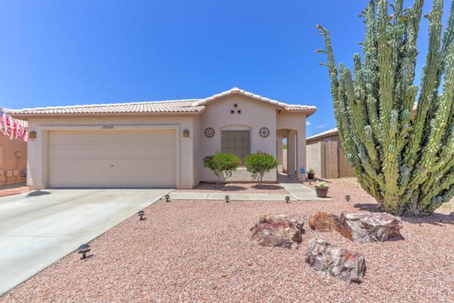 19650 N 110TH Lane, Sun City, AZ 85373 (MLS #5606233) :: Desert Home Premier