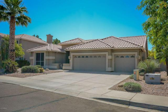 1213 N Renee Avenue, Gilbert, AZ 85234 (MLS #5608293) :: The Bill and Cindy Flowers Team
