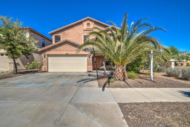 22605 N 19TH Way, Phoenix, AZ 85024 (MLS #5608662) :: Occasio Realty