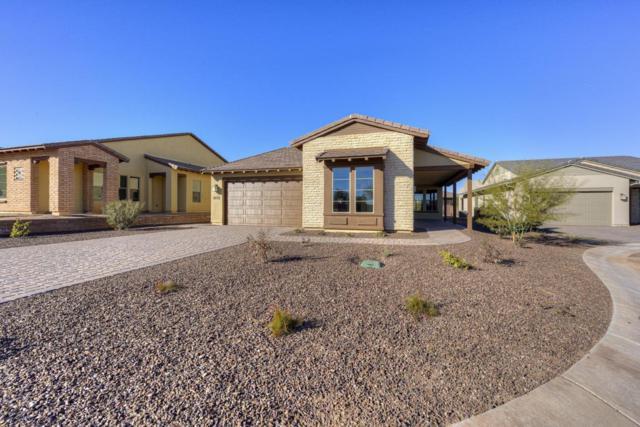 17936 E Silver Sage Lane, Rio Verde, AZ 85263 (MLS #5609172) :: Desert Home Premier