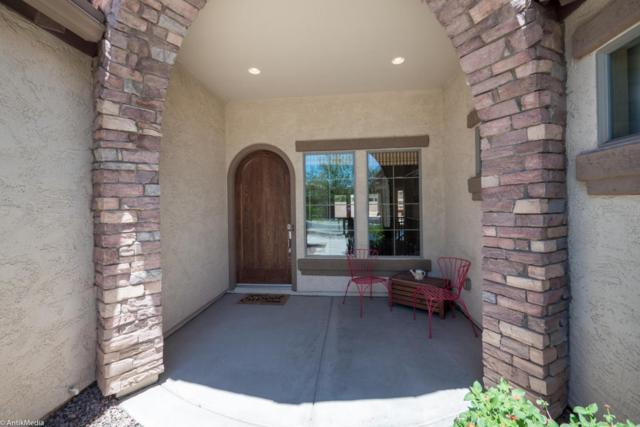 382 W Aster Drive, Chandler, AZ 85248 (MLS #5609349) :: The Everest Team at My Home Group