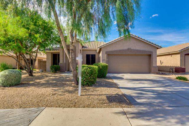 9228 W Salter Drive, Peoria, AZ 85382 (MLS #5610316) :: The Laughton Team