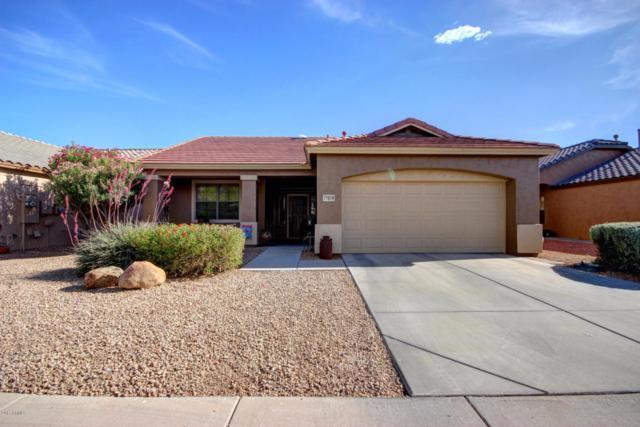 17609 W Babbitt Drive, Surprise, AZ 85374 (MLS #5610634) :: Desert Home Premier