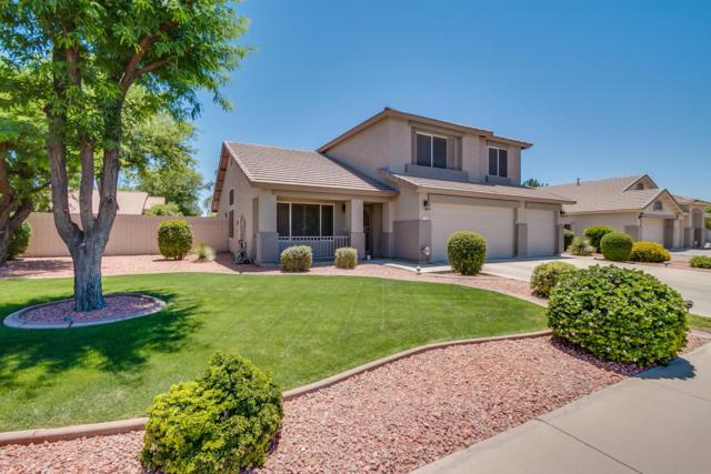 2253 S Nielson Street, Gilbert, AZ 85295 (MLS #5611292) :: Sibbach Team - Realty One Group