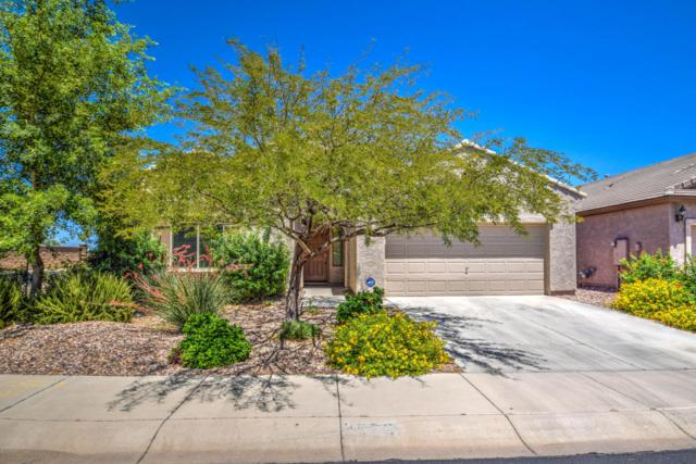 3575 N Balboa Drive, Florence, AZ 85132 (MLS #5611452) :: RE/MAX Home Expert Realty