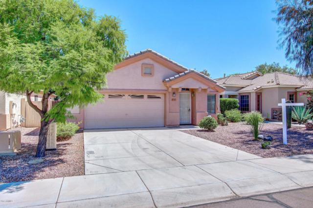 10383 W Runion Drive, Peoria, AZ 85382 (MLS #5612376) :: Devor Real Estate Associates
