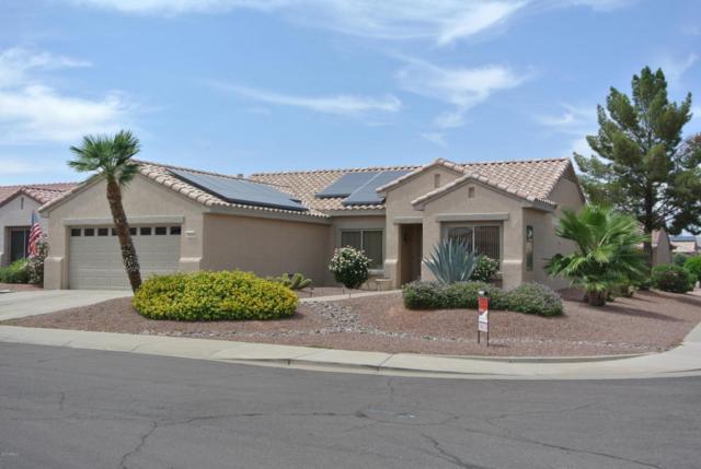 16202 W Tapatio Drive, Surprise, AZ 85374 (MLS #5612869) :: Desert Home Premier