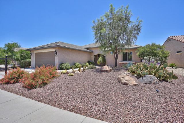 27069 W Ross Avenue, Buckeye, AZ 85396 (MLS #5613717) :: Desert Home Premier