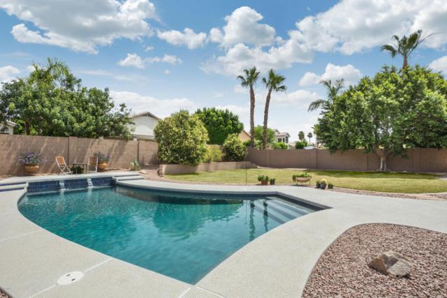 7268 W Donald Drive, Glendale, AZ 85310 (MLS #5614095) :: Sibbach Team - Realty One Group