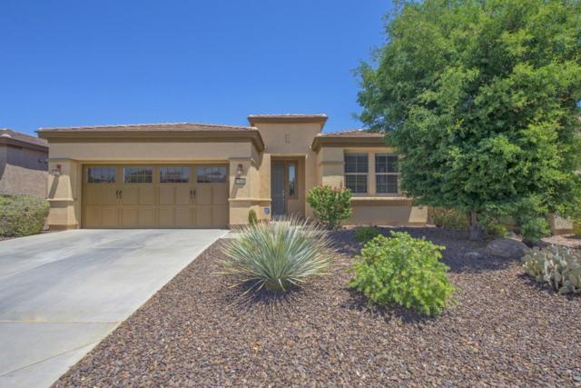 13046 W Mayberry Trail, Peoria, AZ 85383 (MLS #5614411) :: Desert Home Premier