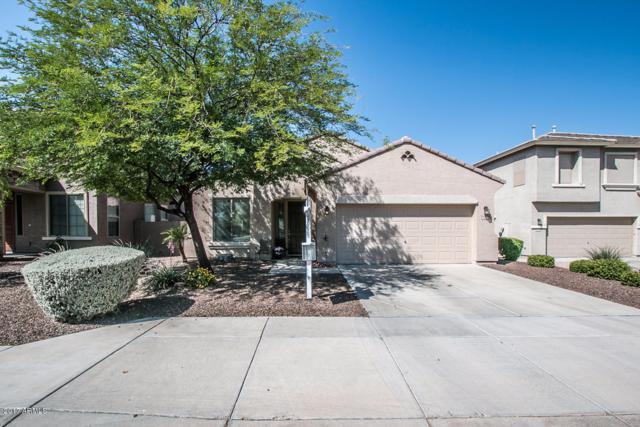 29356 N 69th Avenue, Peoria, AZ 85383 (MLS #5614722) :: The Laughton Team