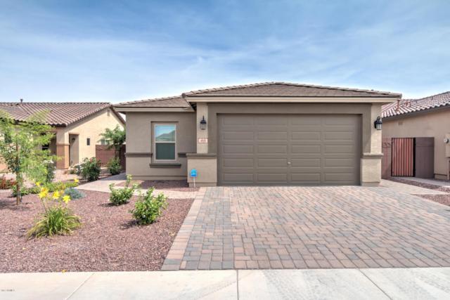 468 W Evergreen Pear Avenue, San Tan Valley, AZ 85140 (MLS #5614748) :: Santizo Realty Group