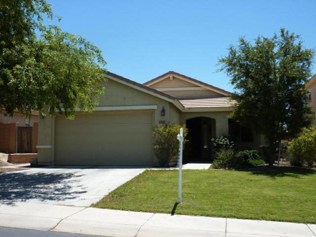 7171 W Red Hawk Drive, Peoria, AZ 85383 (MLS #5615367) :: The Laughton Team
