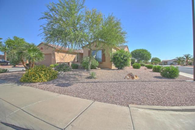 16368 W Glacier Court, Surprise, AZ 85387 (MLS #5615607) :: Desert Home Premier